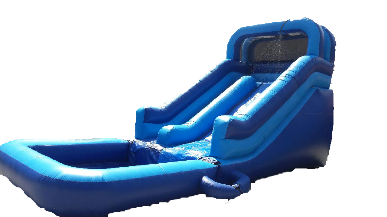 Dolphins Water Slide Jumper House | Party Rental | Dolphins Jumpers